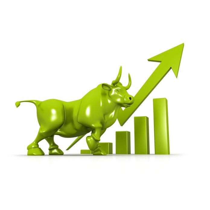 Do akých akcií sa oplatí investovať?