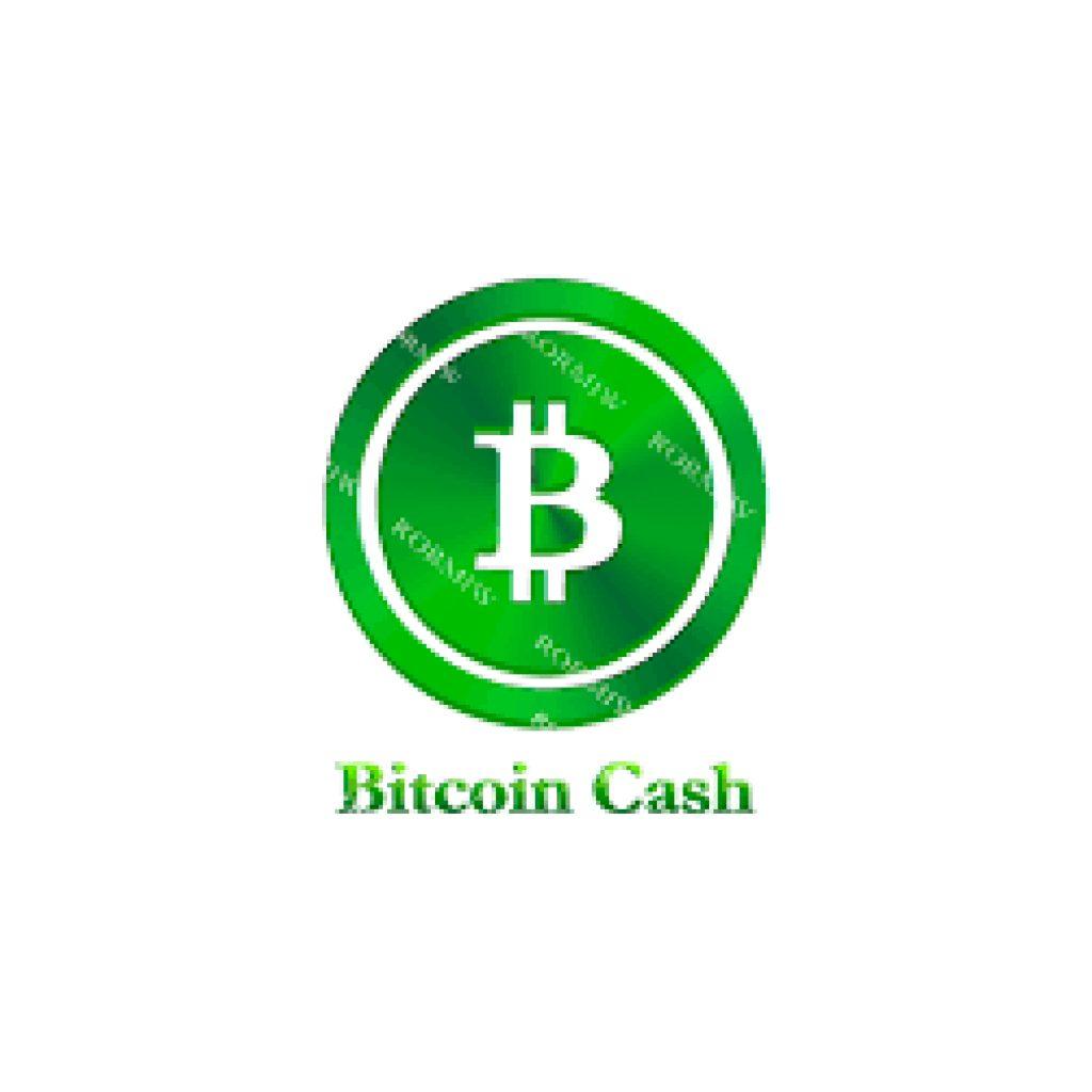Kryptomena Bitcoin Cash - analýza 2021